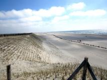 Der neue Strand in Petten
