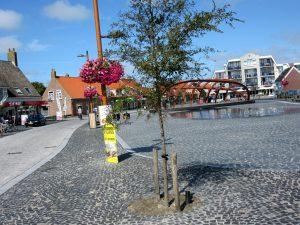 Die Lage unserer Ferienwohnung am Marktplatz von Petten